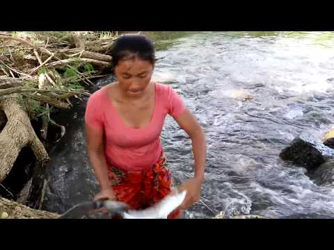 Survival skills: Catch big fish in river & Grilled for food - Cooking big fish eating delicious