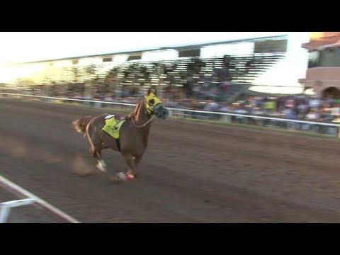 Carreras de Caballos en el Hipodromo de Hermosillo 24 de Septiembre 2017