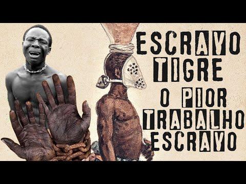 Escravo Tigre - A TERRÍVEL VIDA DOS ESCRAVIZADOS QUE ERAM OBRIGADOS A CARREGAR FEZES DOS SENHORES!