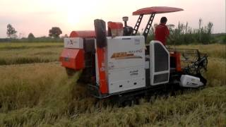 working combine harvester in iran