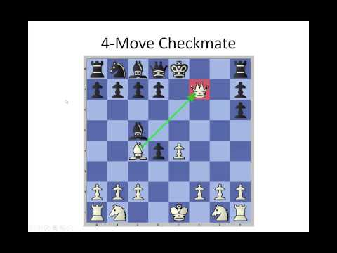 Beginners School Chess Lessons 4 Move Checkmate