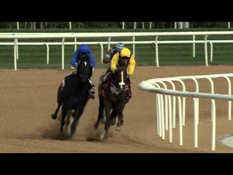 Super Saturday Meydan Racecourse 05-03-16, Race 1 Listed Al Bastakiya Sponsored by Emirates Skywards
