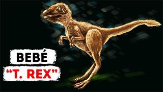 """El joven """"T. rex"""" no se parecía en nada a los dinosaurios que ves en las películas"""