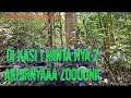 Burung Cucak Jenggot Bikin Kesal Ngakak  Mp3 - Mp4 Download