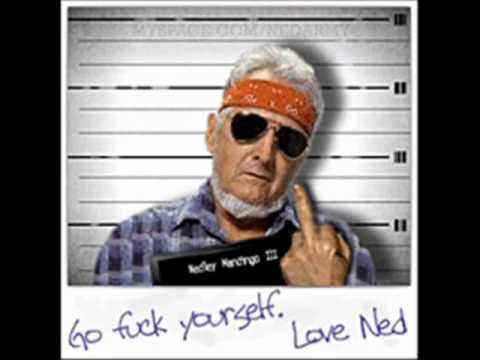 Ned- Im Sorry Bin Laden (Song)