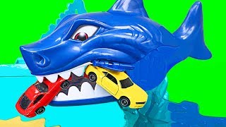 Hot Wheels Shark Beach Battle Play Set Teaching Colors & Numbers for Kids - Organic Learning