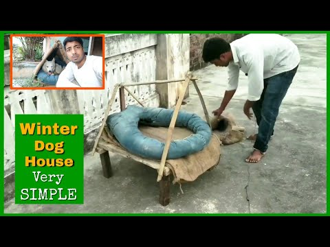 make-dog-winter-house-🏡-with-jeans-and-jute-bag-//-simple-and-best-by-pomtoy-anurag