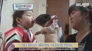 똥꼬발랄 장군이 ♥ 아기돼지 난이 우정스토리 2화!