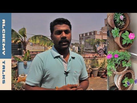 """As-a-Result Health Terrace Garden is Essentially Wonderful""♥ Alchemy Talks,Tamilnadu"