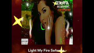"CJ Joe - ""Light My Fire  Señorita"" feat. Andy Vaney (Reggaeton Remix) (Official Audio)"
