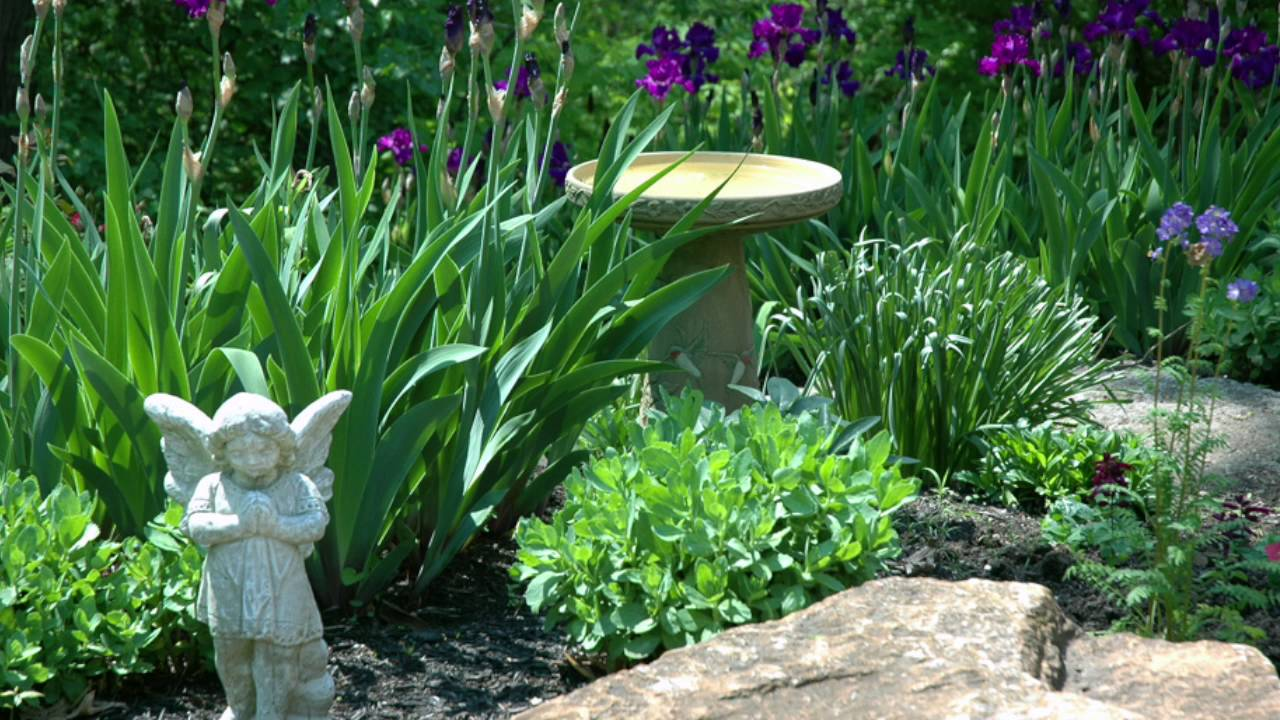 Angel Garden YouTube