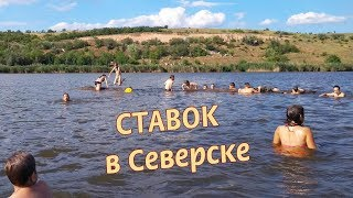 Центральный ставок, Северск Донецкой обл.