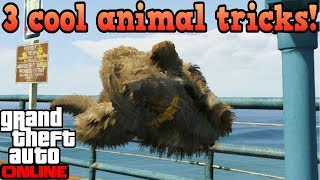 3 cool tricks with animals! - GTA Online