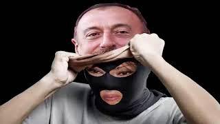 mehriban aliyev vermicem