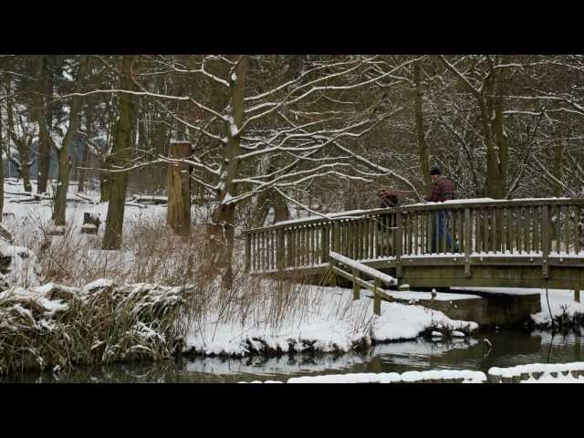 Winter at Coombe Travel Video