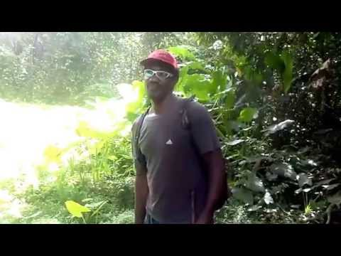 The Blind Man of Soufriere, Dominica