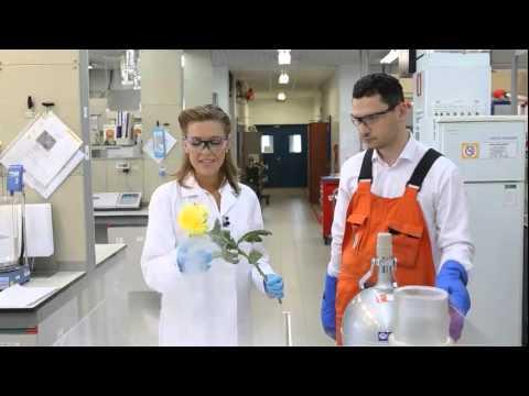 Sakhalin Energy LNG experiments
