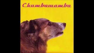 Chumbawamba - Pass It Along