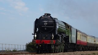British steam trains at full speed! 2013 - 2015