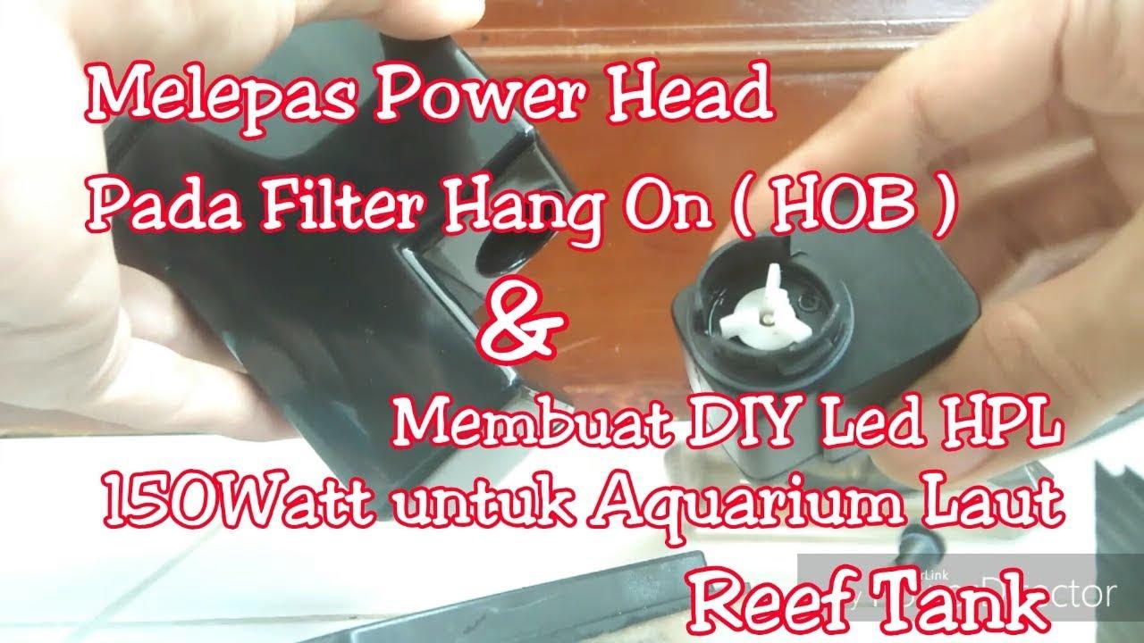 Melepas Memperbaiki Pompa Aquarium Ph Atau Powerhead Pada Filter