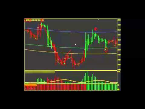 Forex Ace System Review Is This Forex Currency Trading System A Scam