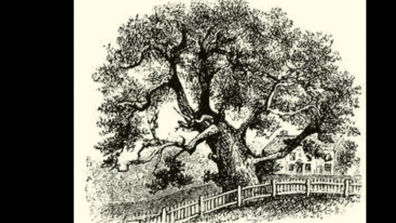 charter oak single guys Meet single women in charter oak ia online & chat in the forums dhu is a 100% free dating site to find single women in charter oak.