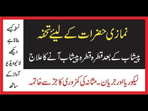 Peshab Ky Qatroon Ka Ilaj||Peshab Nikal...
