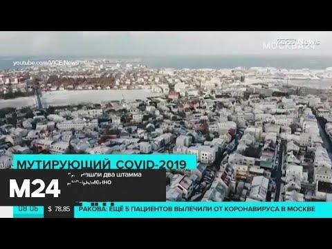 У жителя Исландии нашли два штамма коронавируса одновременно – СМИ - Москва 24