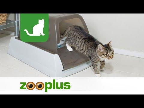 Arenero autolimpiable ScoopFree para gatos   zooplus.es