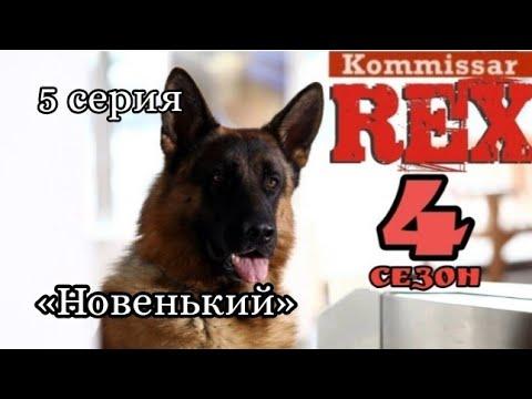 Комиссар рекс 4 сезон 5 серия