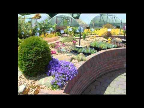Finnegans Nursery & Garden Centre