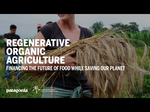 Regenerative Organic Agriculture: Financing The Future Of Food While Saving Our Planet