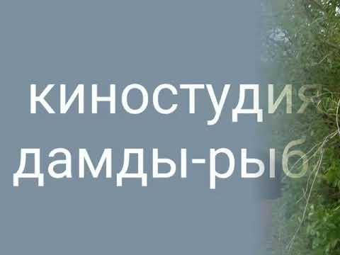 Рыбалка. В. Токарев.