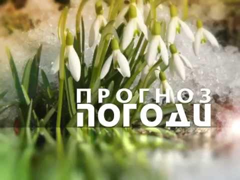 Прогноз погоды в Киеве и области на завтра, Украина