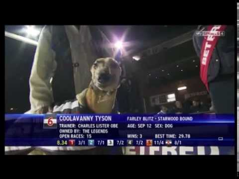 Coolavanny Tyson breaks down at Nottingham greyhound stadium