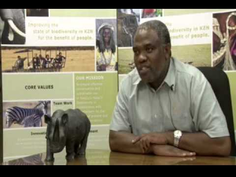 White Rhino - A Conservation Success Story (Part 9)
