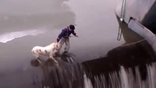 גבר מציל כלב בסֶכֶר - חילוץ כלב שכמעט טבעה -  Rescuing a dog on a water dam