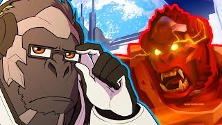 10 Different Types of WINSTON Mains