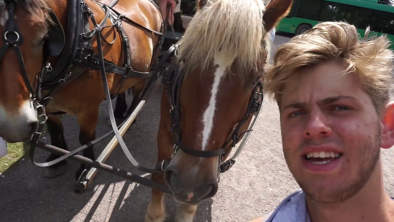 jeg er hest
