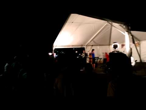 Minneapolis Polish Festival 2015 Caje Sukarija - Megitza Quartet