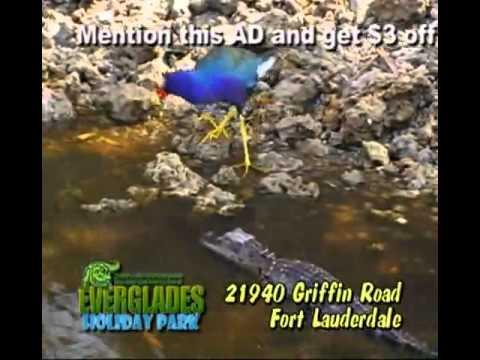 Port Everglades transportation to Everglades Holiday Park