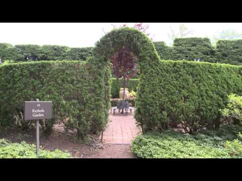Visit Ladew Gardens on Road Tripping With BCPL