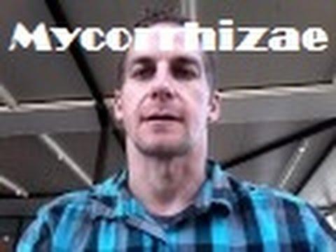 Mycorrhizae Contractors