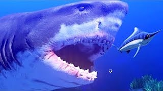 MANGÉ PAR UN IMMENSE REQUIN ! | Feed and Grow: Fish ! thumbnail