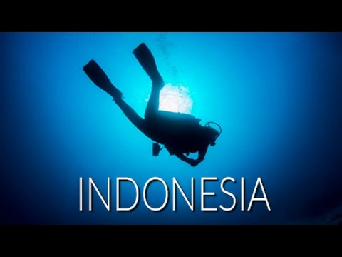 Dive Indonesia with Ocean First