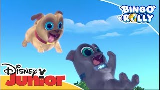 Bingo y Rolly: 5 Razones por las que adoramos a Bingo y Rolly   Disney Junior Oficial
