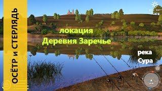 Російська рибалка 4 - річка Сура - Осетер і стерлядь у села