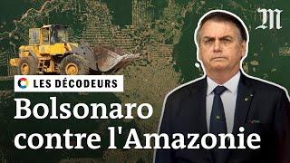 Jair Bolsonaro est-il une menace pour l'Amazonie?