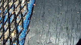 "Expanded Metal Riffle Sluice 12"" V1"