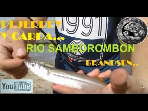 Recorriendo el Samborombon # 1 | Brandsen | pesca variada